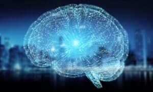 Neurolodzy powoli odkrywają jak działa świadomość