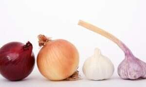 Cebula i czosnek mogą chronić przed rakiem