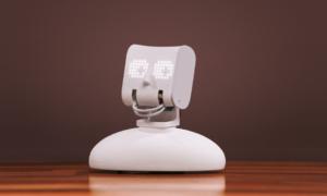 Zaprogramowaniem tego robotycznego popiersia Picoh zajmą się sami klienci