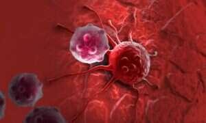 Nanocząsteczki platyny w walce z rakiem wątroby