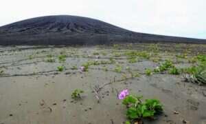 Ta wulkaniczna wyspa pomoże naukowcom w badaniach nad Marsem