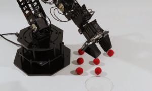 Naukowcy opracowali robota uczącego się samego siebie