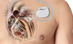 Naukowcy stworzyli bezpieczną sieć w ludzkim ciele