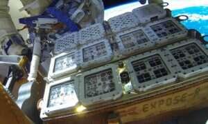 Mikroby są w stanie przeżyć w przestrzeni poza ISS