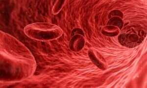 Ultradźwięki mogą leczyć wysokie ciśnienie krwi