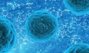 Komórki wykorzystują cukry do komunikacji na poziomie molekularnym