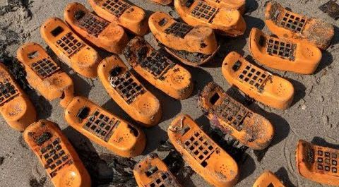 35-letnia tajemnica ''telefonów Garfielda'' została wyjaśniona