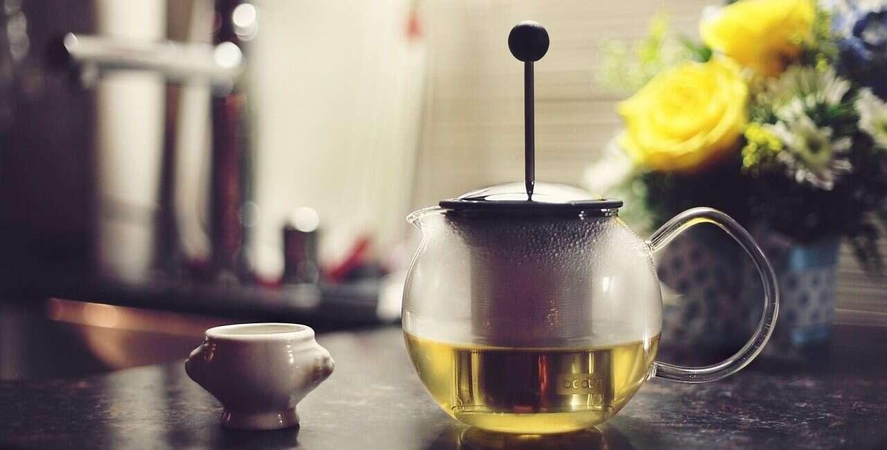 alzheimer, zielona herbata alzheimer, marchew alzheimer, marchewka alzheimer, leczenie alzheimera,