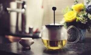 Związki będące w zielonej herbacie i marchwi odwracają skutki Alzheimera