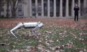 Robot Mini Cheetah prosto z MIT chwali się swoimi akrobacjami