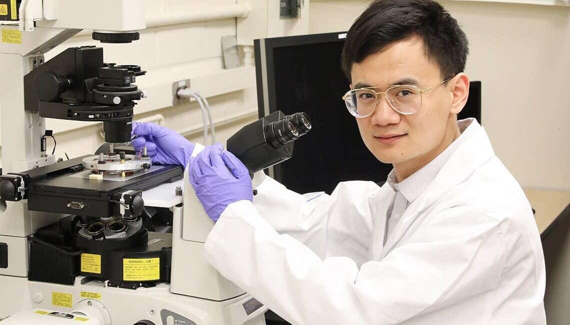 badanie komórek, komórki nowotworowe, nanobot komórki, łapanie komórek, wychwytywanie komórek