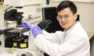 Nanobot badający komórki od wewnątrz
