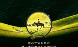 Huawei reklamuje możliwości zoomu modelu P30 Pro