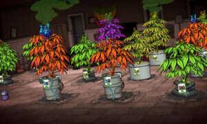 Data premiery Weedcraft – polskiej gry o uprawie marihuany