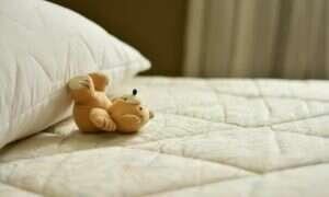 Czy jakiekolwiek zwierzę może przeżyć bez snu?