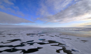 Na Oceanie Arktycznym w ciągu 20 lat może zabraknąć lodu