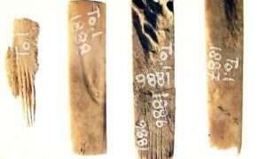 Te narzędzia do tatuażu mają ponad 2700 lat