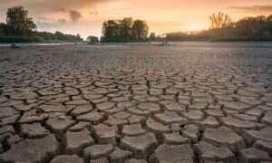 Hydrożel wykorzystuje energię słoneczną do chwytania wody z powietrza