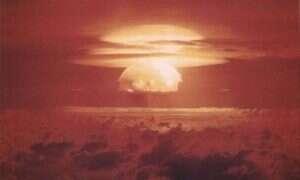 Czy karaluchy naprawdę przetrwały by atak nuklearny?