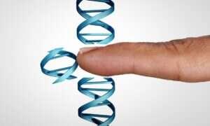 WHO chce stworzyć globalny rejestr badań nad edycją genów