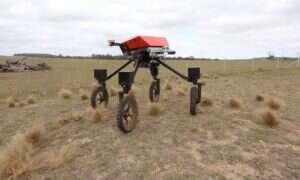 Autonomiczny robot rolniczy SwagBot trafi do mas