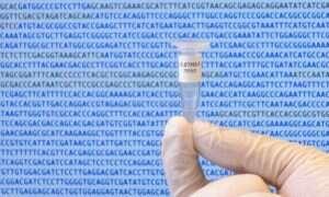Powstał pierwszy wygenerowany komputerowo genom
