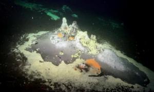 Zobaczcie te niesamowite podwodne formacje