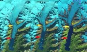 Lodowiec na Alasce zastępowany jest przez ogromne jezioro