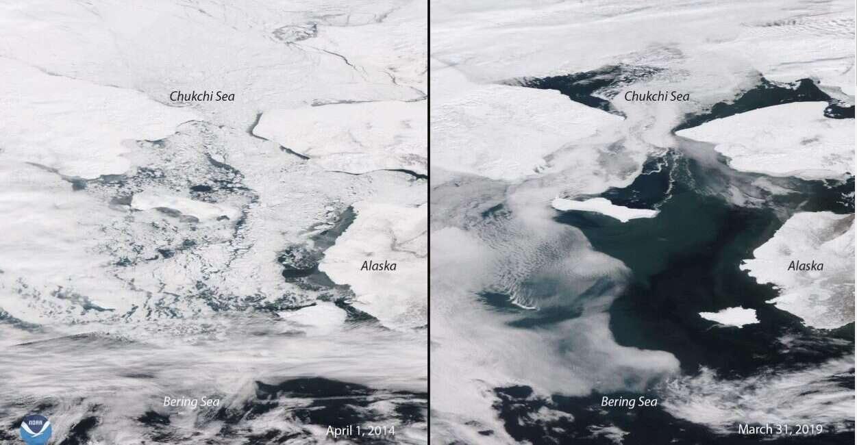 Morze Beringa, lód Morze Beringa, zamrożenie Morze Beringa, ocieplenie klimatu, zmiany klimatyczne