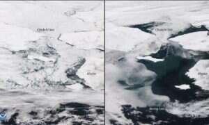 Morze Beringa powinno być dalej zamrożone