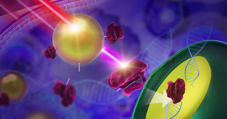 CRISPR, światło CRISPR, kontrolowanie CRISPR, chiny CRISPR
