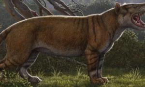 W przeszłości Ziemię zamieszkiwało zwierzę przypominające tolkienowskich Wargów