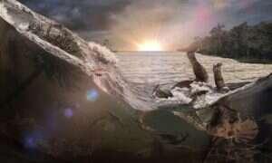 Szczątki pokazują masowe wymieranie na skutek uderzenia asteroidy