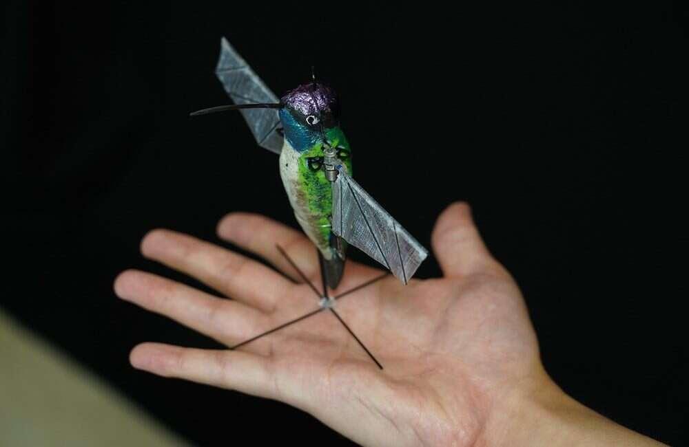 podobny do koliberka dron