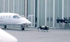 Robot HyQReal holował 3-tonowy samolot pasażerski