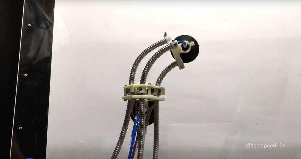 Robot inspirowany pijawką jest wyjątkowy... według twórców