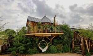 Luksusowy prefabrykowany dom na drzewie od Blue Forest