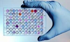 Przechowywane dane w oligopeptydach mogą przetrwać tysiąclecia