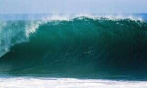 Zanieczyszczenie oceanu szkodzi bakteriom, które wytwarzają tlen