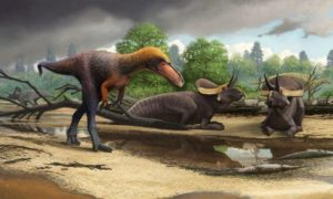 Nowy kuzyn tyrannosaurusa rexa odkryty