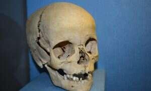 Współcześni ludzie i neandertalczycy wywodzą się z tajemniczego wspólnego przodka