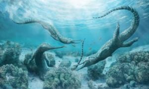 Potwór morski wielkości samochodu rządził oceanami