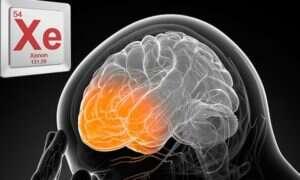 Ksenon zapewnia ochronę po uszkodzeniu mózgu