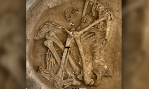 Neolityczne miasto było tak zatłoczone, że mieszkańcy próbowali się wzajemnie wybić