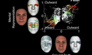 Naukowcy stworzyli modele twarzy na podstawie informacji z mózgu