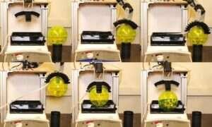 Naukowcy opracowali robota zdolnego do testowania wody