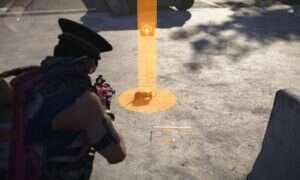 Zabijanie zwierząt w The Division 2 daje nam specjalną amunicję