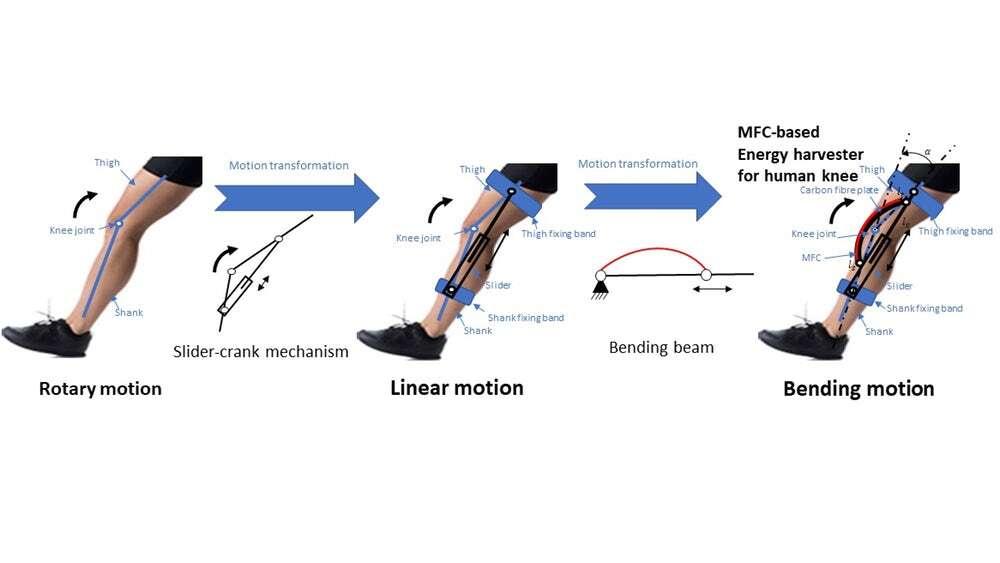 Opracowano urządzenie generujące energię ze zginania kolana