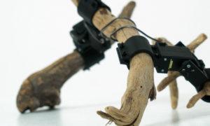 Naukowcy stworzyli robota z gałęzi, który sam nauczył się chodzić