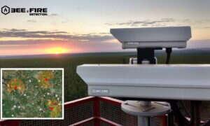 System Bee2FireDetection może powstrzymać wiele katastrof spowodowanych pożarami